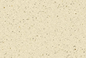 Caspian Almond :: Image magnified for purpose of illustration