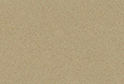Caspian Wheat :: Image magnified for purpose of illustration
